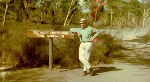 TMG '68 Safari Rally